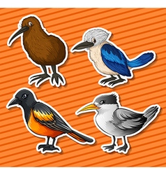 Different kind of birds vector