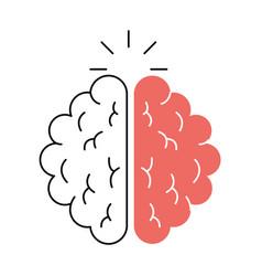 Brain organ human icon vector