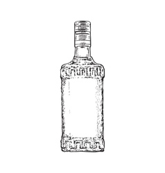 Hand drawn bottle full of tequila isolated vector