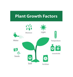 Plant growth factor infographic in monochrome vector
