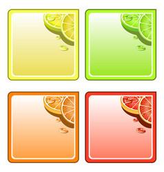Fruit collage coaster set vector