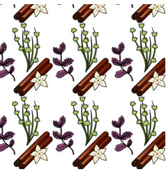 Herbs and spices plants and organ food back vector