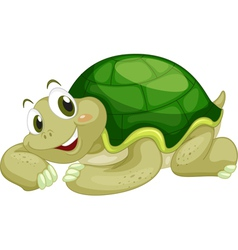 Animated turtle vector