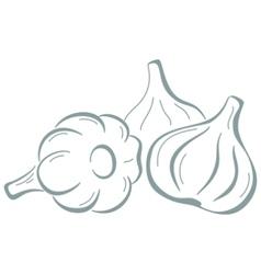 Garlic pictogram vector