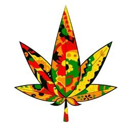 marijuana leaf in Rastafarian colors vector image