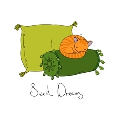 Beautiful pillows and cute cat vector image
