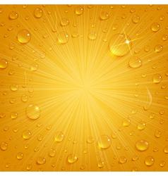 Condensate drops on beer background vector