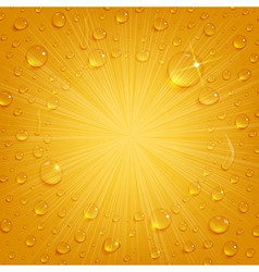 Condensate Drops on Beer Background vector image