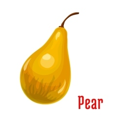 Pear fruit isolated cartoon icon for food design vector