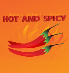 Hot and spicy orange background vector image