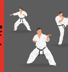Three men demonstrate karate on a dark background vector