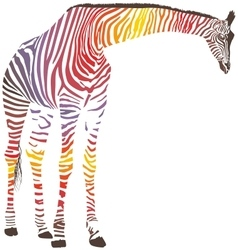Abstract giraffe with zebra skin vector