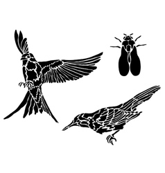 Collection of tattoos of birds vector image