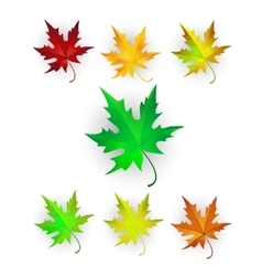 Autumn maple leaves set vector