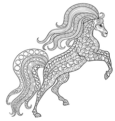Hand drawn horse for antistress coloring page with vector