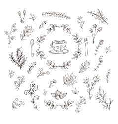 Set of branches flowers leaves and bushes vector