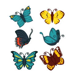 colorful butterfly set of six isolated on white vector image