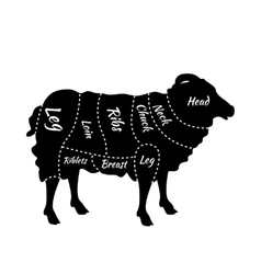 Cuts of Lamb or Mutton Diagram vector image vector image