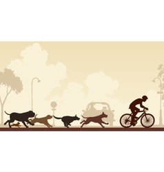 Dogs chasing cyclist vector