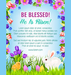 Happy easter eggs bunnies greeting poster vector