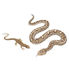 reptiles vector image
