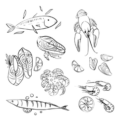 Seafood set vector