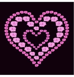 Heart of pink roses on dark background vector