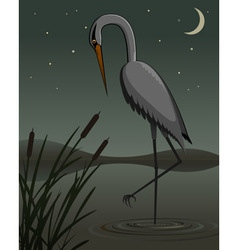 Grey heron vector