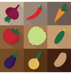 Set of 9 vegetables on brown background vector image vector image
