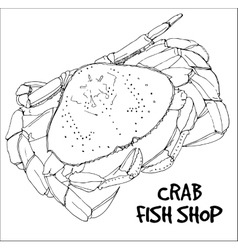 Crab in lines on white background vector