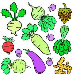 art fresh vegetable set vector image
