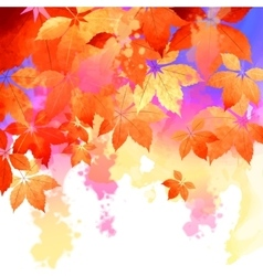 Autumn watercolor fall leaves vector