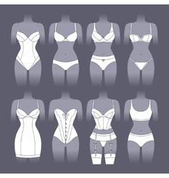 Fashion lingerie set of various female underwear vector image