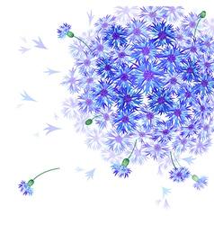 caltrop blooming vector image