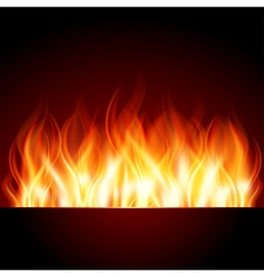 flame burn background vector image