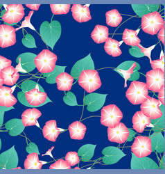 pink morning glory on blue indigo background vector image vector image