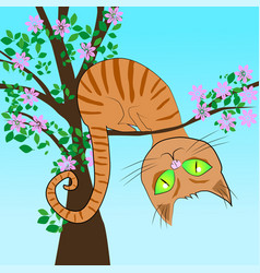red cat in a tree vector image vector image