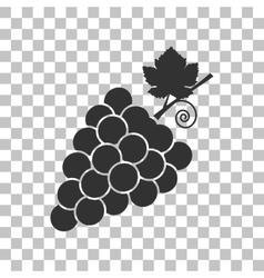 Grapes sign  dark gray icon on vector