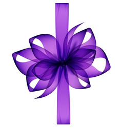Purple transparent bow and ribbon on background vector