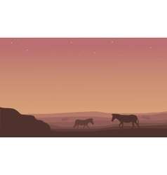 Silhouette of zebra scenery in hill vector