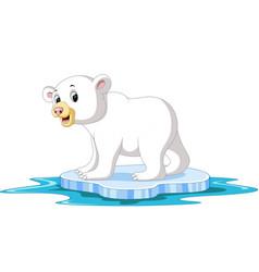 polar bear cartoon vector image vector image