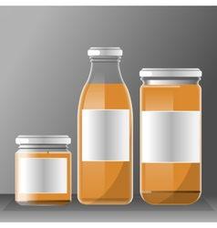 set of transparent glass or plastic orange vector image