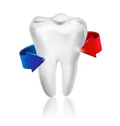 White tooth surrounded by beams Taking care of vector image