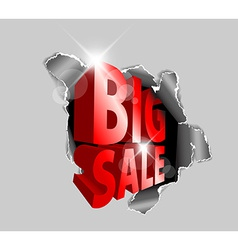 Big sale discount advertisement vector