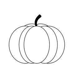 Pumpkin vegetable icon image vector
