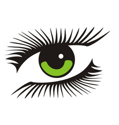 green eye with long lashes vector image vector image