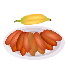 Delicious sun dried bananas on a dish vector