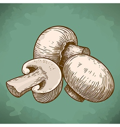 engraving tree champignons retro vector image