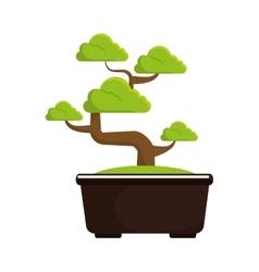 Bonsai tree culture japanese vector