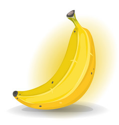 banana fruit vector image